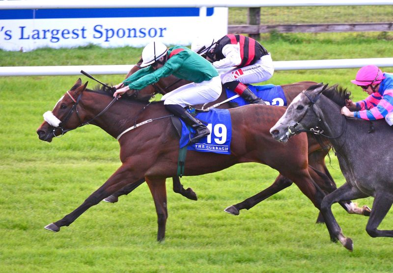 Katiba Becomes The Latest Winner By Footstepsinthesand