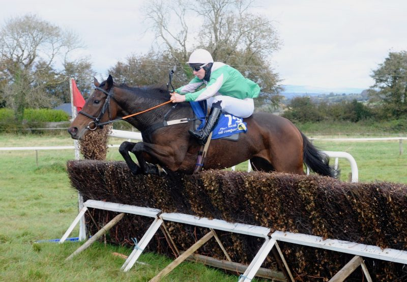 Kilbarry Leader (Leading Light) Wins The 4YO Mares Maiden At Dromahane