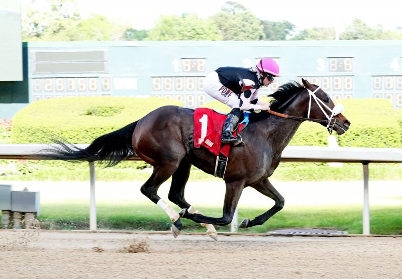 Lucky Betty (Munnings) winning Oaklawn Park Allowance