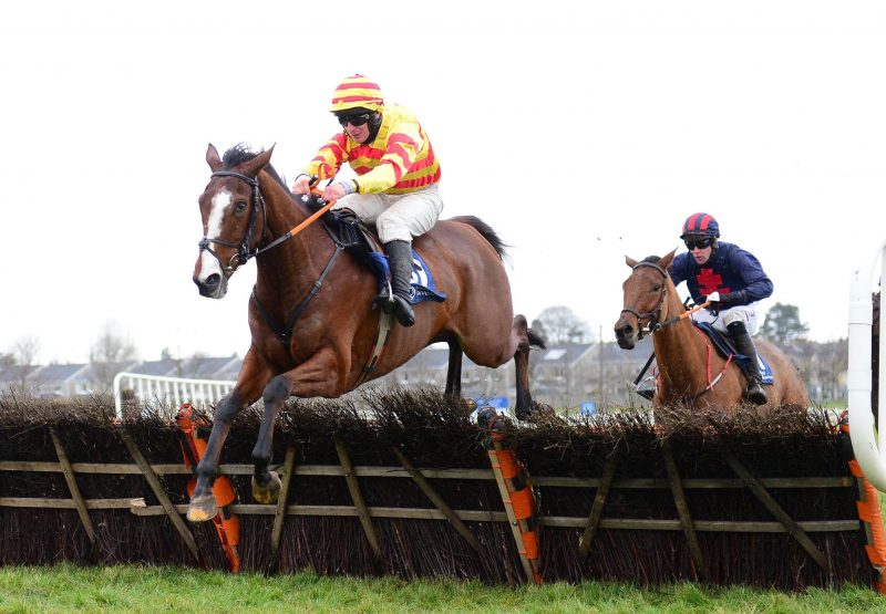Limestone Rock (Leading Light) Wins The Maiden Hurdle At Naas