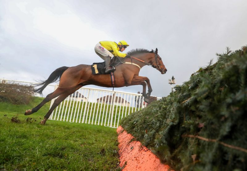 Lostintranslation (Flemensfirth) winning the Listed Colin Parker Memorial Intermediate Chase at Carlisle