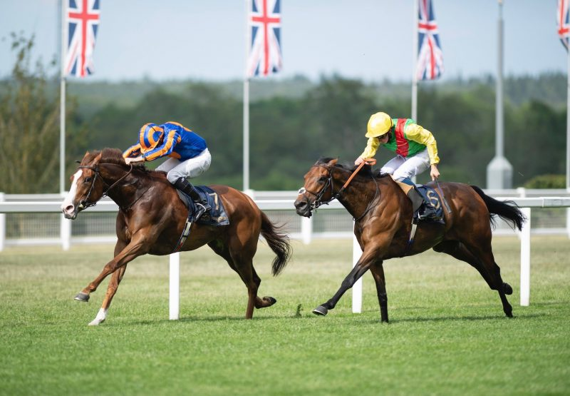 Love Wins The Group 1 Prince Of Wales'S Stakes 1