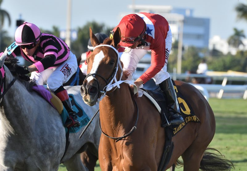 Lucky Long (Lookin At Lucjy) winning the Crown Tiara at Gulfstream Park