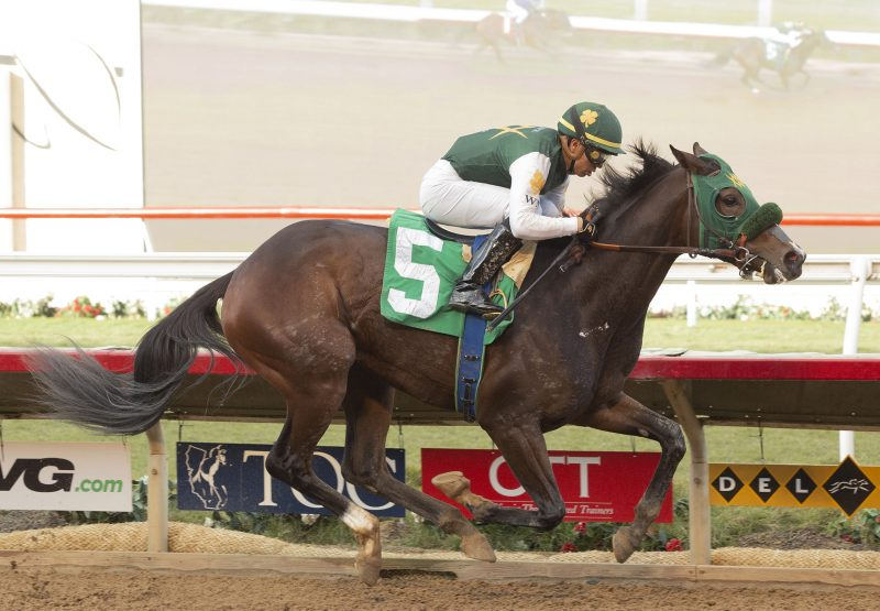 Miss Kitness (Competitive Edge) Breaking Maiden At Del Mar