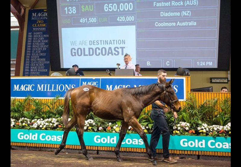 Fastnet Rock ex Diademe colt selling for $650,000 at the Magic Millions Weanling Sale