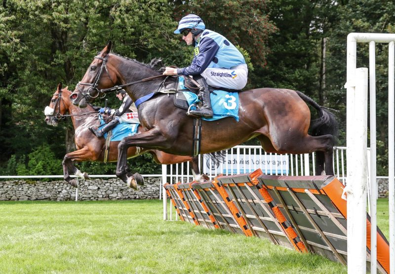 Mega Double Gains Her Second Hurdle Win Resized