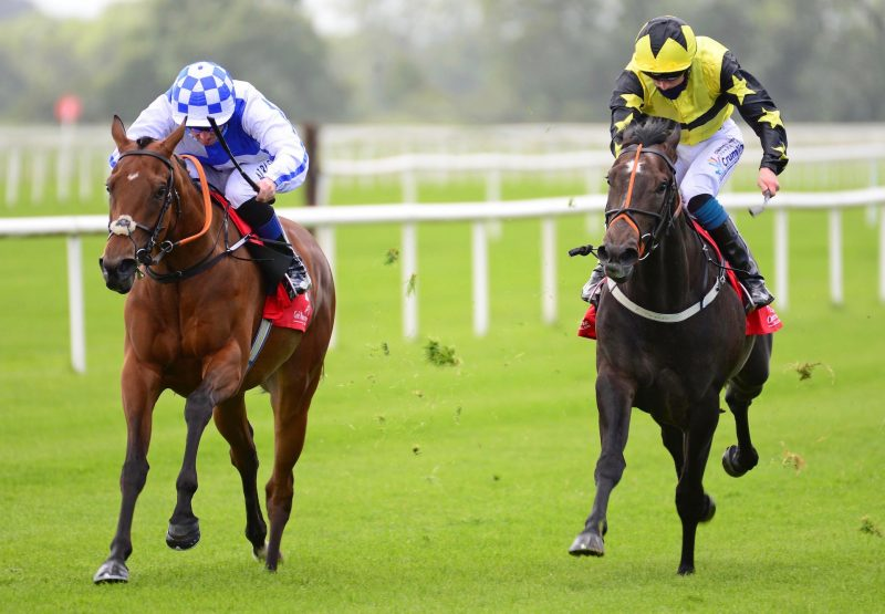 Minaun (Zoffany) Wins The Gr.3 Marble Hill Stakes at Cork