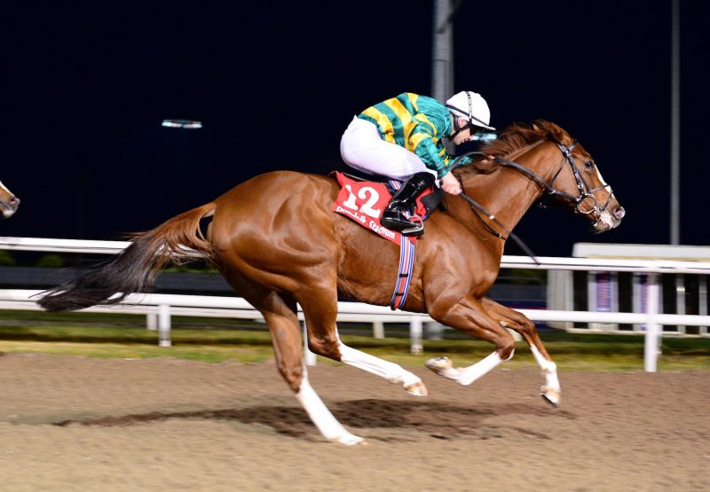 Music To My Ears (Australia) Wins At Dundalk