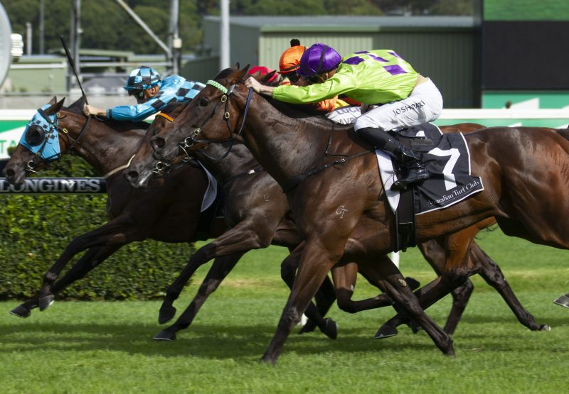 Nakeeta Jane (So You Think) winning the G1 Surround Stakes at Randwick
