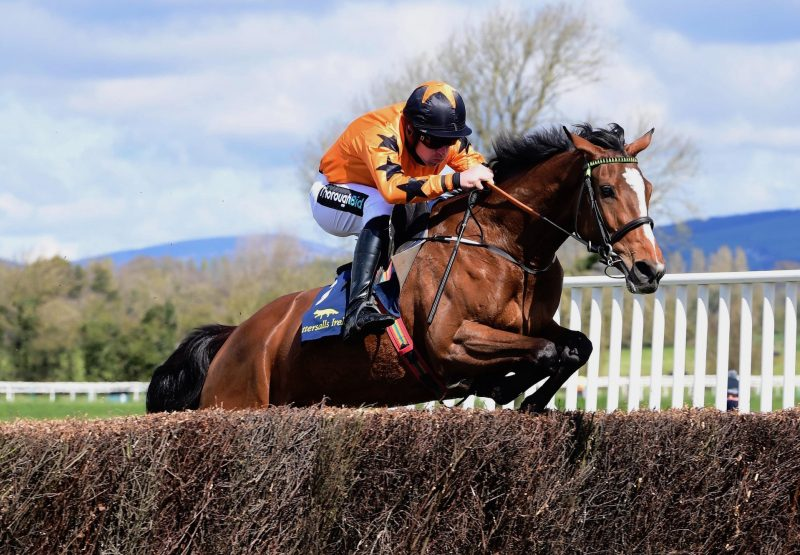 North Of Nashville (Soldier Of Fortune) Wins The Four Year Old Mares Maiden P2 P At Tipperary