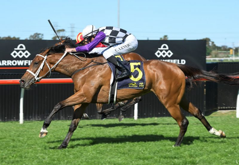 Nudge (Fasnet Rock) winning the Gr.3 Pam O'Neill Stakes at Doomben