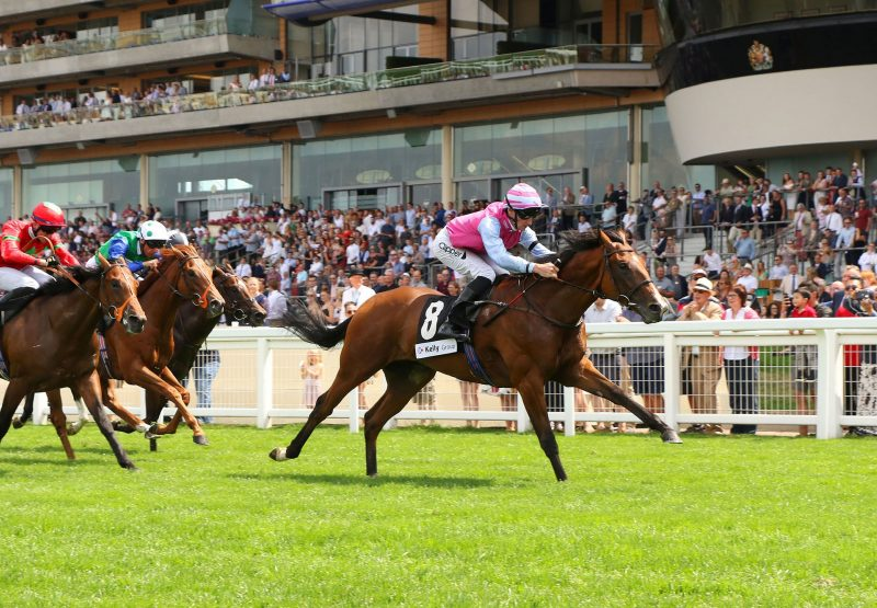 Nuremberg (War Command) winning a novice stakes at Ascot