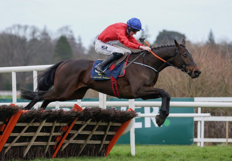 Tillys Chilli (Excelebration) winning at Navan