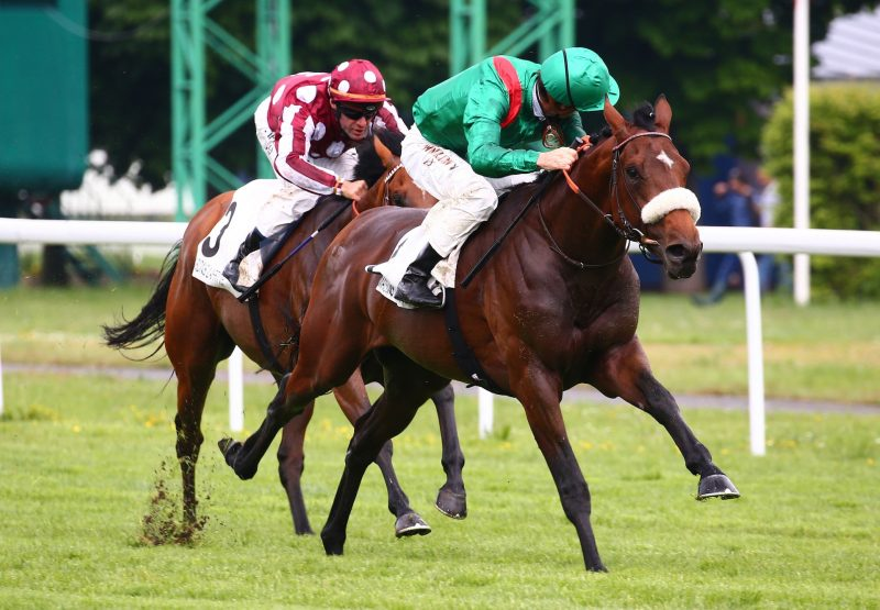 Rayapour Becomes The Latest Winner By Mastercraftsman