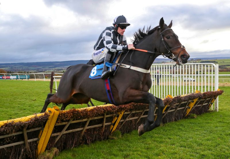 Ribble Valley (Westerner) wins over hurdles at Hexham