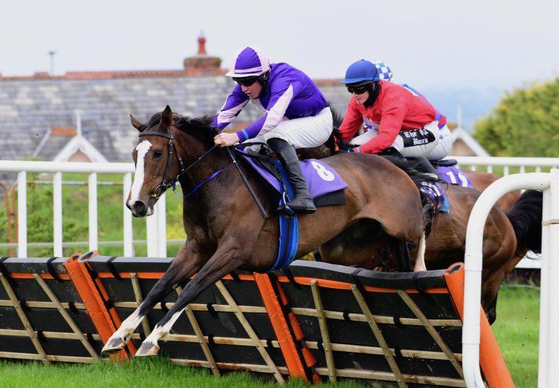 Roisins Ciara (Ocovango) Wins The Mares Maiden Hurdle At Wexford