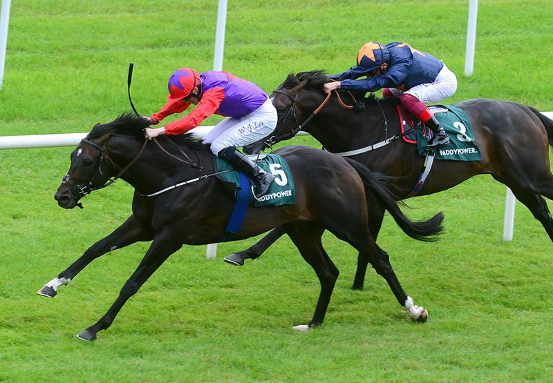 Romanised (Holy Roman Emperor) winning the Gr.2 Minstrel Stakes at the Curragh