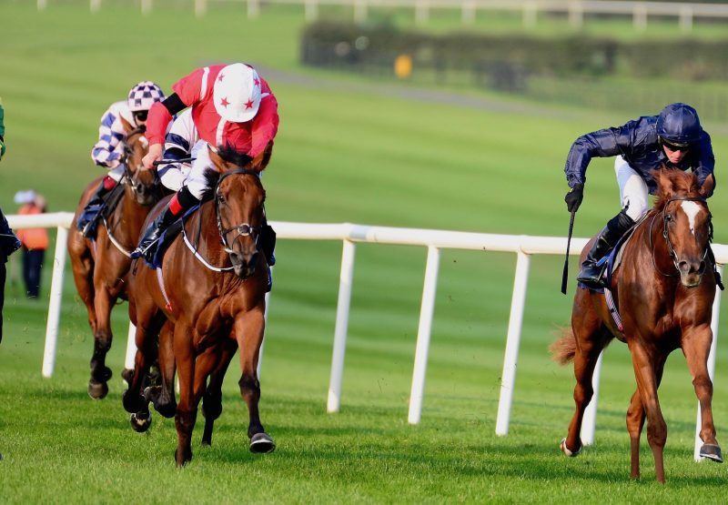 Sense Of Style (Zoffany) Wins Her Maiden At Naas