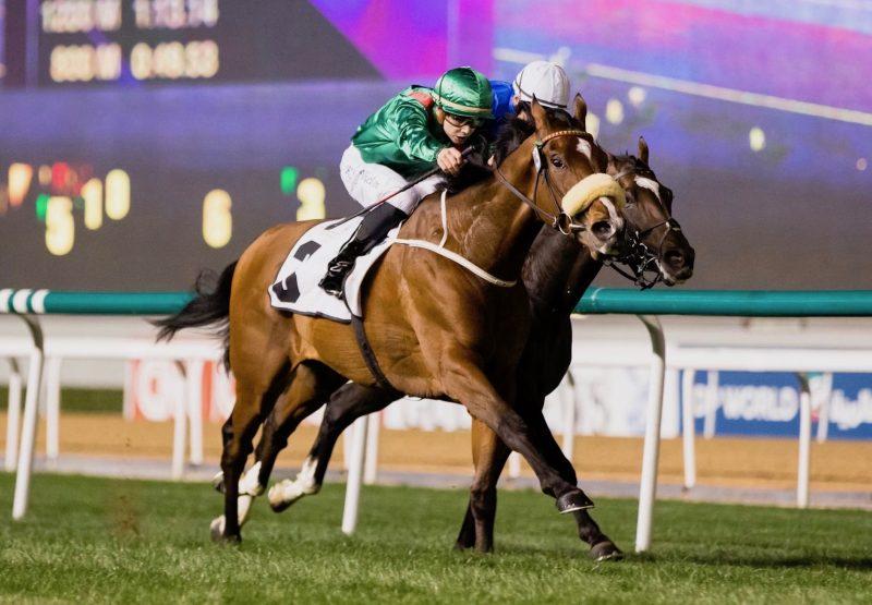 Simsir (Zoffany) winning at Meydan