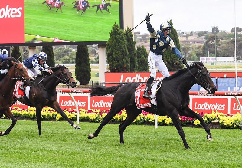 Sir Dragonet (Camelot) winnings the Gr.1 Cox Plate at Moonee Valley