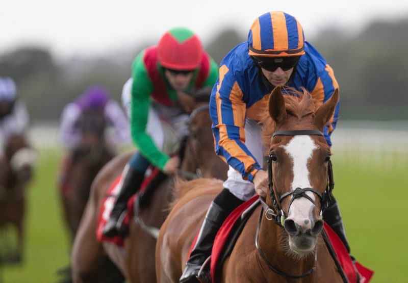 Snow (Galileo) Wins The Gr.3 Munster Oaks at Cork