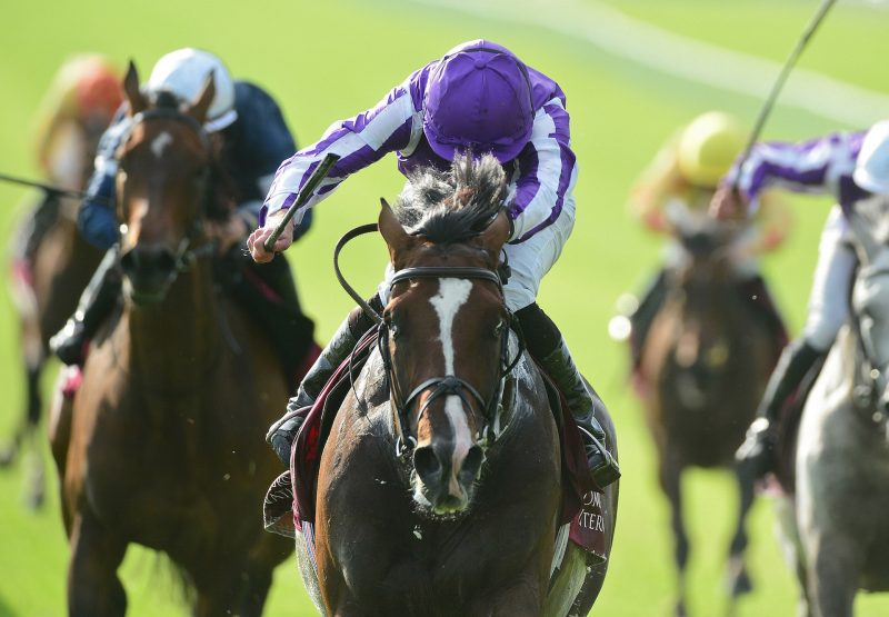 Southern France (Galileo) Wins The Irish St Leger Trial