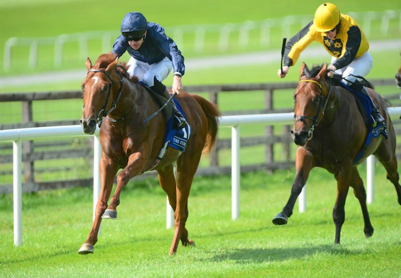 Sydney Opera House (Australia) winning a maiden at the Curragh