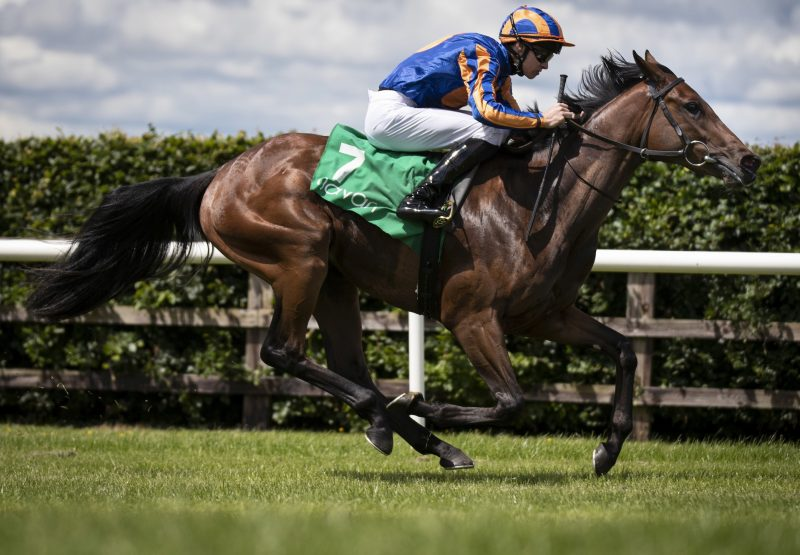 Tango Becomes The Latest Winner By No Nay Never