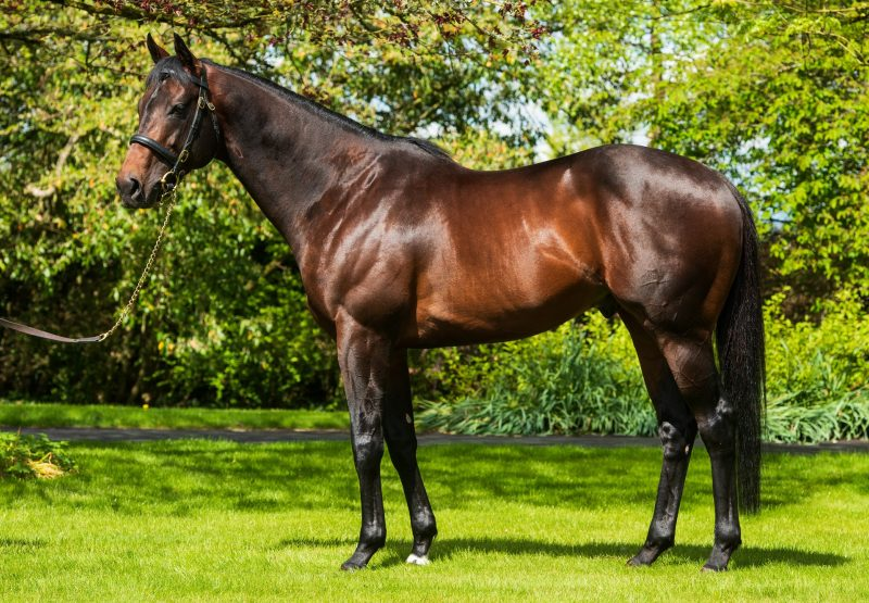 Ten Sovereigns Conformation 2020 Approved
