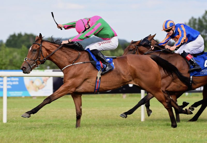 Theory Of Music (Fastnet Rock) Wins Her Maiden At Limerick