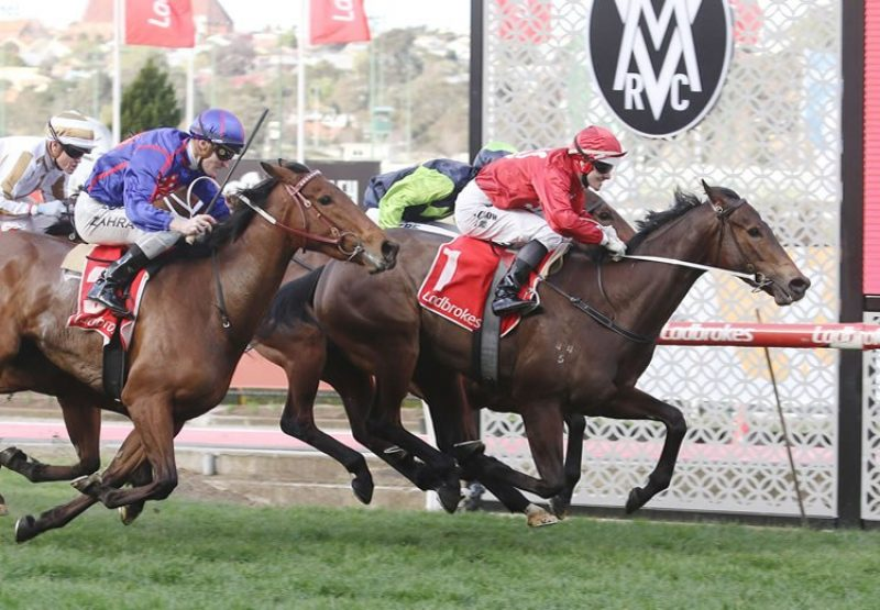 Thrillster (Starspangledbanner) winning the Listed MVRC Atlantic Jewel Stakes at Moonee Valley