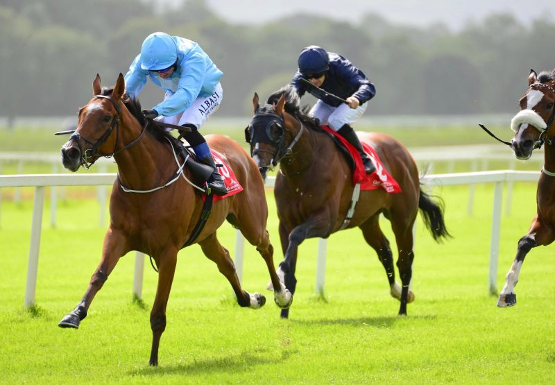 Too Soon To Panic (Gleneagles) Wins Her Maiden At Cork