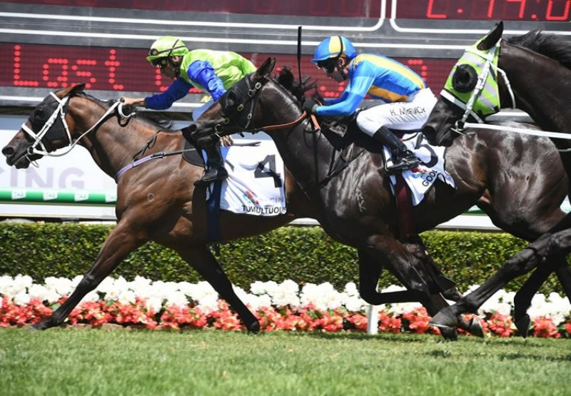 Tumultuous (Fastnet Rock) winning the Magic Millions Trophy
