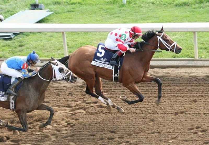 Unbridled Mo (Uncle Mo) G1 Apple Blossom Handicap at Oaklawn
