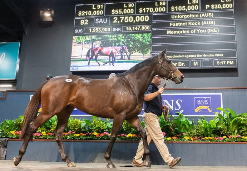 Unforgotten (Fastnet Rock) selling for $2.75 million at the Magic Millions National Sale