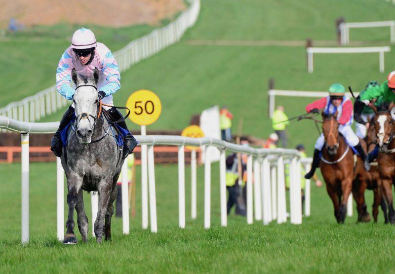 Western Zara (Westerner) Wins The Mares Maiden Hurdle At Clonmel