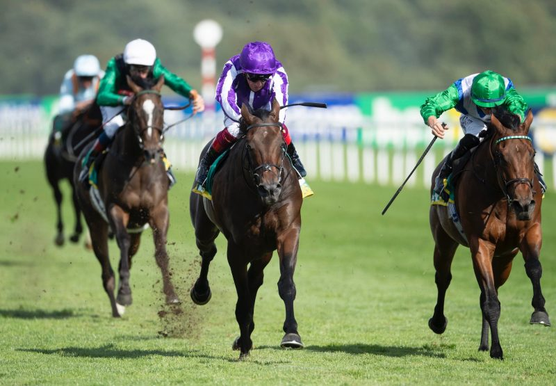 Wichita (No Nay Never) Wins The Group 2 Park Stakes at Doncaster