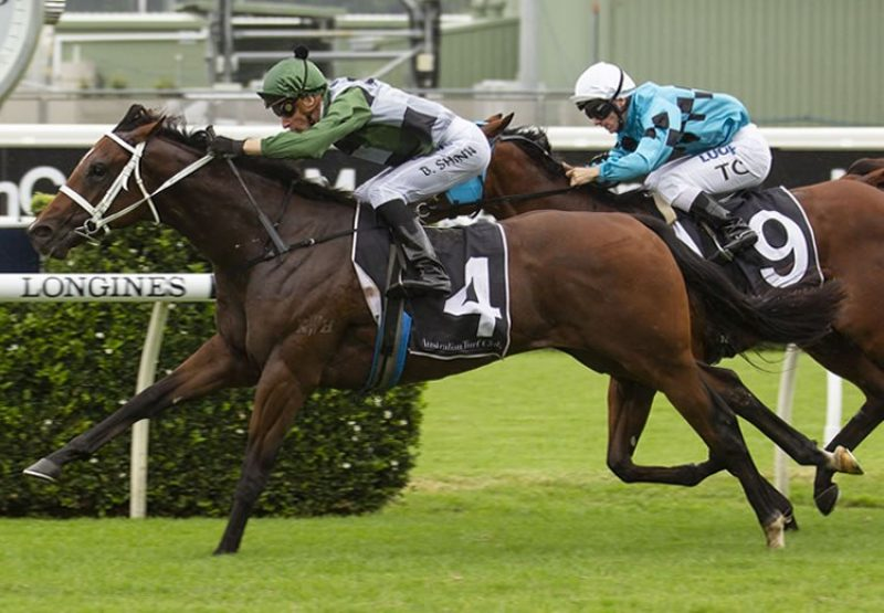 Yes Yes Yes (Rubick) winning the G2 Todman Stakes at Randwick