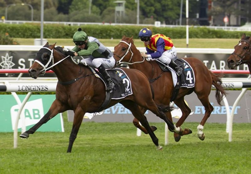 Yes Yes Yes (Rubick) winning the $14 million Everest at Randwick in record-breaking time