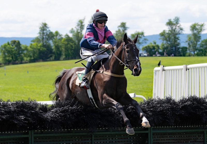 Zoom Zoom Zoe (Leading Light) Wins The Maiden Hurdle At Middleburg