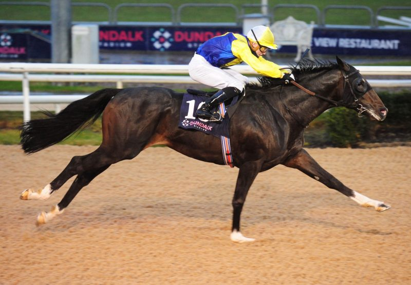 Zozimus (Footstepsinthesand) Wins His Maiden At Dundalk