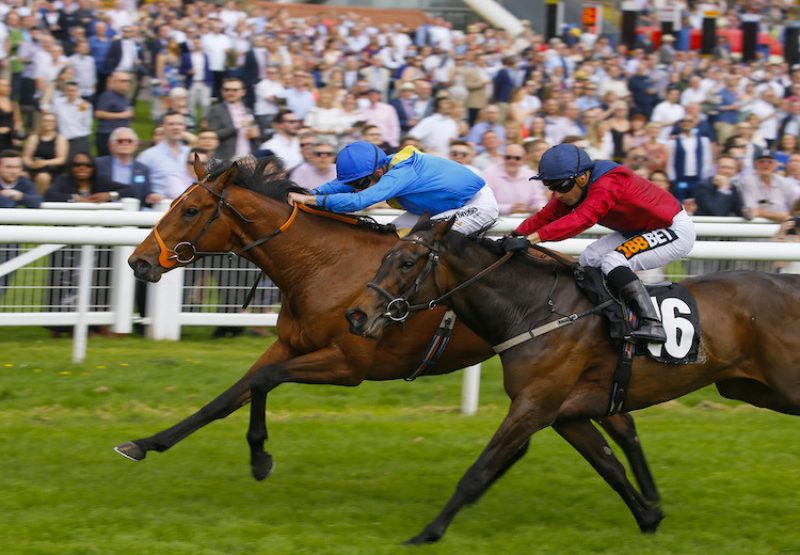 Adjutant (Champs Elysees) winning a maiden at Newbury
