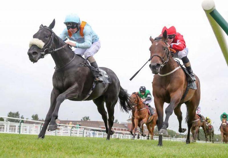 Beechwood Ella (No Nay Never) winning a novice stakes at Ayr