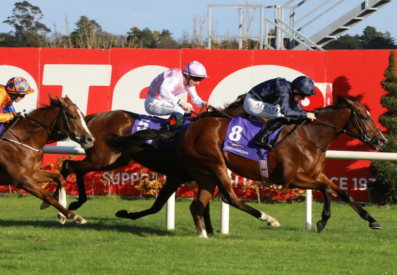 I Remember You (Australia) winning a nursery at Leopardstown