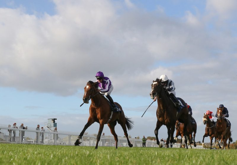 Japan (Galileo) winning the G2 Beresford Stakes at Naas