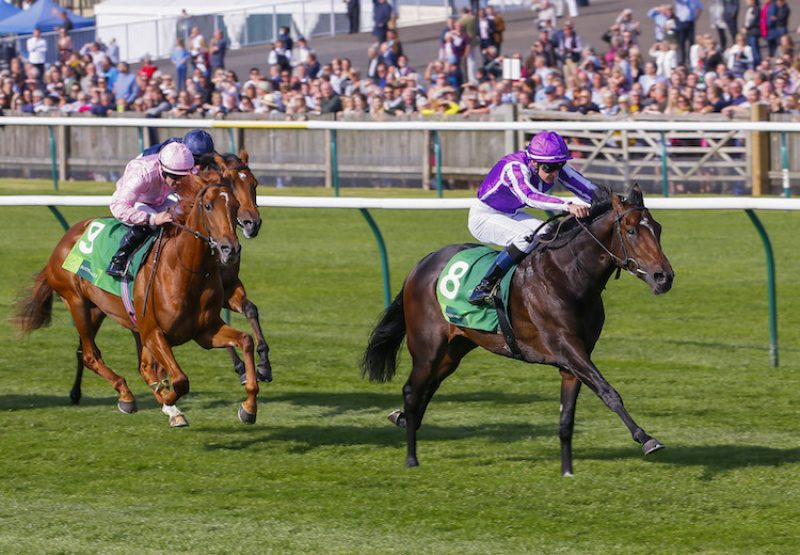 Mohawk (Galileo) winning the G2 Royal Lodge at Newmarket