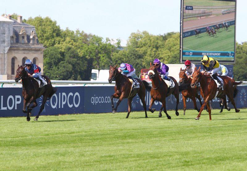 Pollara (Camelot) winning the G3 Prix de Royaumont at Chantilly