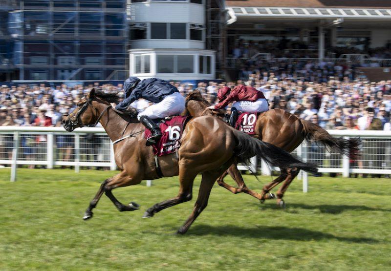 Rhododendron (Galileo) winning the G1 Lockinge Stakes at Newbury