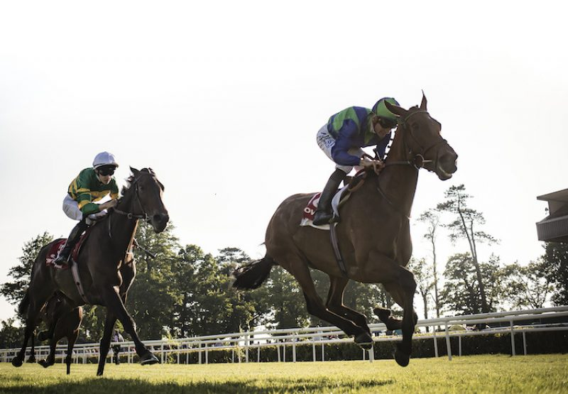 Turret Rocks (Fastnet Rock) winning the Listed Victor McCalmont Memorial Stakes at Gowran Park