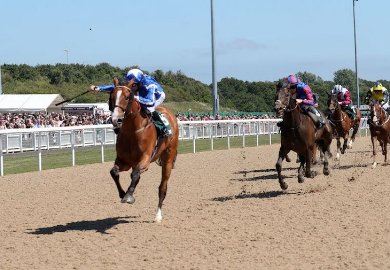 Withhold (Champs Elysees) winning the Northumberland Plate at Newcastle